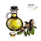 Vectorreeks haarverzorgingingrediënten Organische hand getrokken kleurenelementen Argan notentak en oliefles Royalty-vrije Stock Foto