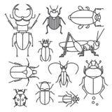Vectorreeks insecten Royalty-vrije Stock Afbeeldingen