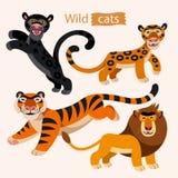 Vectorreeks leuke wilde katten Royalty-vrije Stock Foto