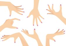 Vectorreeks Mooie Vrouwenhanden Stock Foto