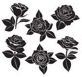 Vectorreeks Roze knoppen, stammen en bladeren met witte contourlijn en silhouetten in zwarte kleur Vectorillustratie voor ontwerp Royalty-vrije Stock Fotografie