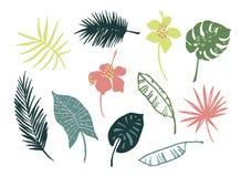 Vectorreeks tropische bladeren en bloemen Royalty-vrije Stock Afbeelding