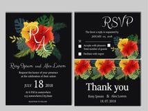 Vectorreeks uitnodigingskaarten met het Huwelijkscol. van bloemenelementen Stock Afbeeldingen