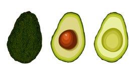 Vectorreeks van avocadofruit royalty-vrije illustratie