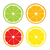 Vectorreeks van citroen, sinaasappel, kalk, grapefruitplakken Royalty-vrije Stock Foto