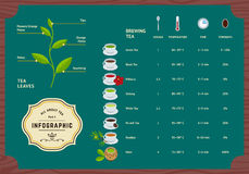Vectorreeks van Thee Infographics Royalty-vrije Stock Fotografie