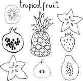 Vectorreeks van tropacfruit - ananas, granaatappel, kiwi, peer, aardbei, papaja, carambola vector illustratie