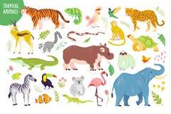 Vectorreeks vlakke hand getrokken tropische die dieren, vogels, reptielen, planten op witte achtergrond worden geïsoleerd: tijger vector illustratie