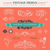 Vectorreeksschrijver uit de klassieke oudheid Ð ¡ alligraphic het boekdecoratio van ontwerpelementen Royalty-vrije Stock Fotografie