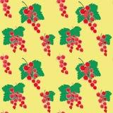 Vectorrode aalbesachtergrond in vage stijl, naadloos patroon Royalty-vrije Stock Afbeeldingen