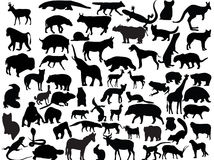 Vectors Of Animals Royalty Free Stock Photo