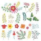 Vectorset mit Weinlese blüht Einzelteile Blumen, Niederlassungen, Beeren Stockfoto