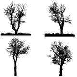 Vectorsilhouet van boom Stock Foto