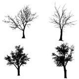 Vectorsilhouet van boom Stock Foto's