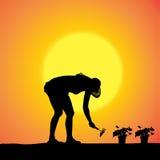 Vectorsilhouet van een tuinman Royalty-vrije Stock Foto