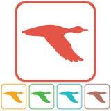 Vectorsilhouet vliegende eend Royalty-vrije Stock Afbeeldingen