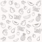Vectorsilhouetten van fruitpatroon Stock Foto