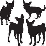 Vectorsilhouetten van honden in het rek Royalty-vrije Stock Fotografie