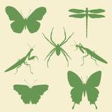 Vectorsilhouetten van insecten - vlinder, spin, bidsprinkhanen Royalty-vrije Stock Afbeeldingen
