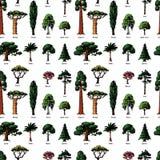 Vectorstijltypes van de boomschets hand getrokken groene bospijnboomtreetops inzameling van berk, ceder en acacia of groen vector illustratie