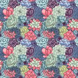 Vectorsucculents naadloos patroon Succulent ornament royalty-vrije illustratie