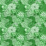 Vectorsucculents naadloos patroon Succulent ornament stock illustratie