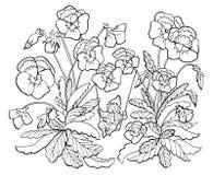 Vectortekening van weinig gnoom op schommeling met tuinviooltje vector illustratie