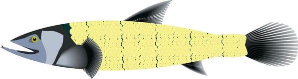 Vectorvissen Stock Afbeelding
