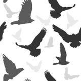 Vectorvogels naadloos patroon als achtergrond Stock Foto