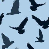 Vectorvogels naadloos patroon als achtergrond Stock Afbeelding
