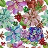 Vectorwaterverf naadloos patroon van succulents Stock Afbeeldingen