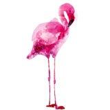 Vectorwaterverf roze flamingo Stock Afbeelding
