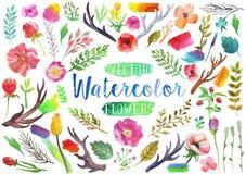 Vectorwaterverfaquarelle bloemen en bladeren Royalty-vrije Stock Afbeeldingen
