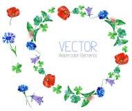 Vectorwaterverfbloemen en elementen Stock Afbeelding