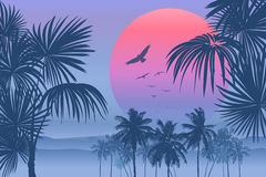Vectot Tropical sunrise. Tropical sunrise with pink gradient sun and silhouette of palm trees, soaring birds and mountains in the background of blue sky Royalty Free Stock Photos