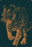 vectror тигра Стоковое Изображение RF