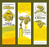 Vectror banners of olives and olive oil. Olive oil banners of green and black olives. Vector design for extra virgin natural organic oil product in bottle of Stock Photography