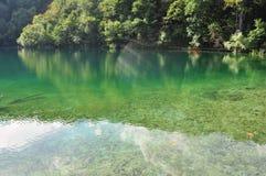 Veda attraverso il lago verde immagini stock libere da diritti
