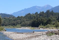 Vedder River at Chilliwack British Columbia. The Veddar River at Chilliwack offers year round activities for the outdoor enthusiast. Trails provide easy access Royalty Free Stock Images