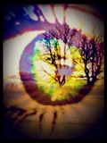 Vedete che cosa vedo? Fotografia Stock Libera da Diritti