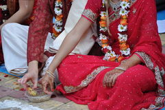Vedic Hochzeit Stockbild