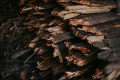 Vedträ för brand som staplas i en plan hög Väggvedträ arkivfoton