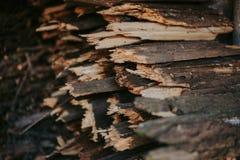 Vedträ för brand som staplas i en plan hög Väggvedträ arkivbilder