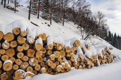 Vedträ för vintern under snön royaltyfri bild
