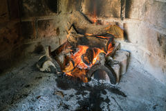 Vedträ på brand Arkivbild