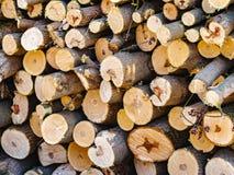 Vedträ sågad bunt En hög av huggit av trä royaltyfri fotografi