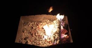 Vedträbränning i brand lager videofilmer