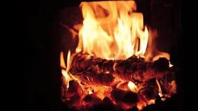Vedträbränning i flammor stock video