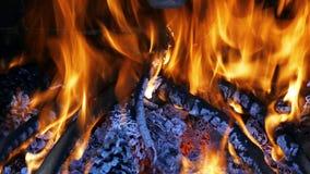 Vedträbränning i spisen stock video