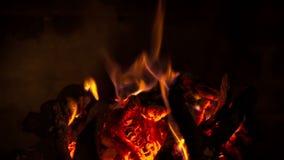 Vedträbränningen i spisen stock video